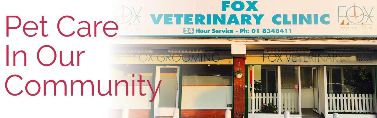 Fox Vets Finglas