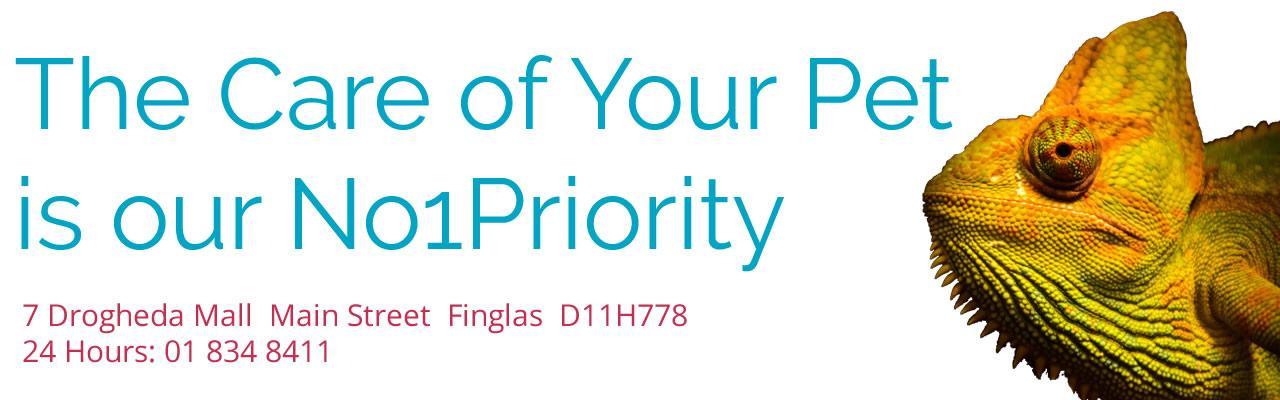 Finglas Community Vet